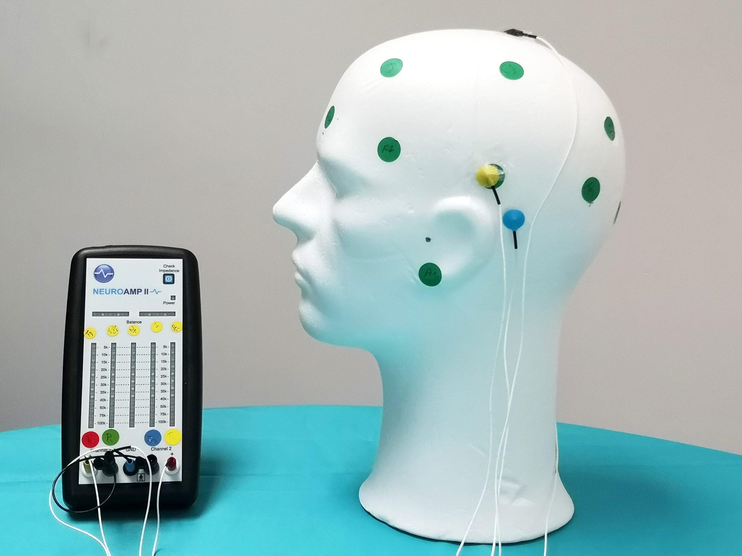 Matériel de Neurofeedback. Il y a un amplificateur d'EEG relié à des capteurs posées sur une tête de mannequin en polystyrène