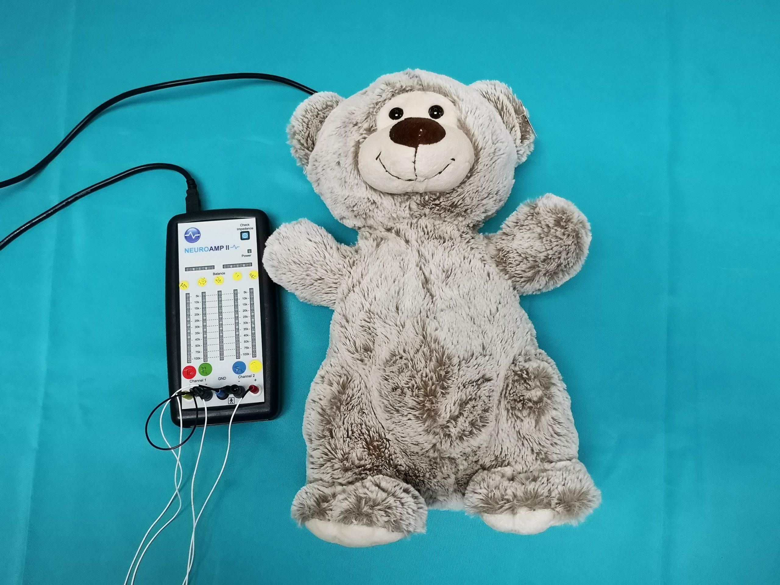 Neurofeedback et Feedback tactile. Il y a un ours en peluche marron relié à un amplificateur d'EEG